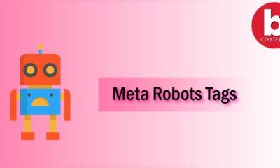meta robots tags